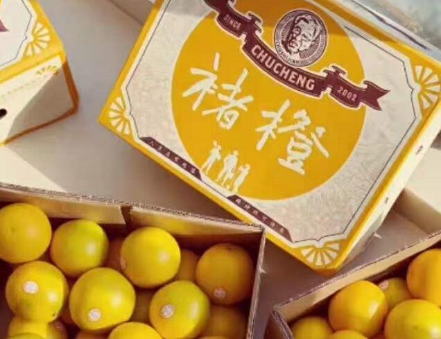 褚橙为何比实建橙贵,究竟有什么区别?