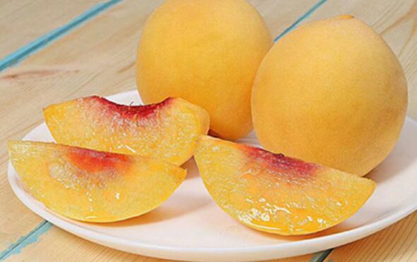株洲炎陵黄桃为何这么出名,真的好吃吗?