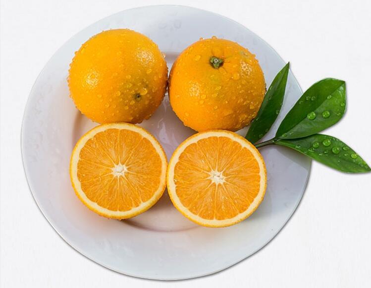 麻阳冰糖橙60毫米的多少钱一斤?