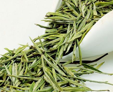 安吉白茶适合秋季喝吗?(一年四季都适合饮用)