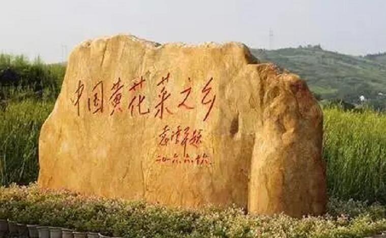 """祁东为何被称为""""中国黄花菜之乡""""?"""
